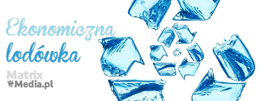 ekonomiczna lodówka