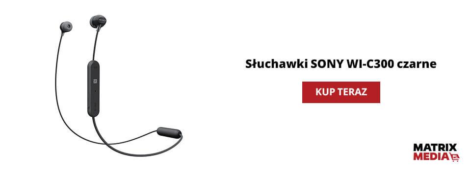 ile kosztują słuchawki sony wi-c300?